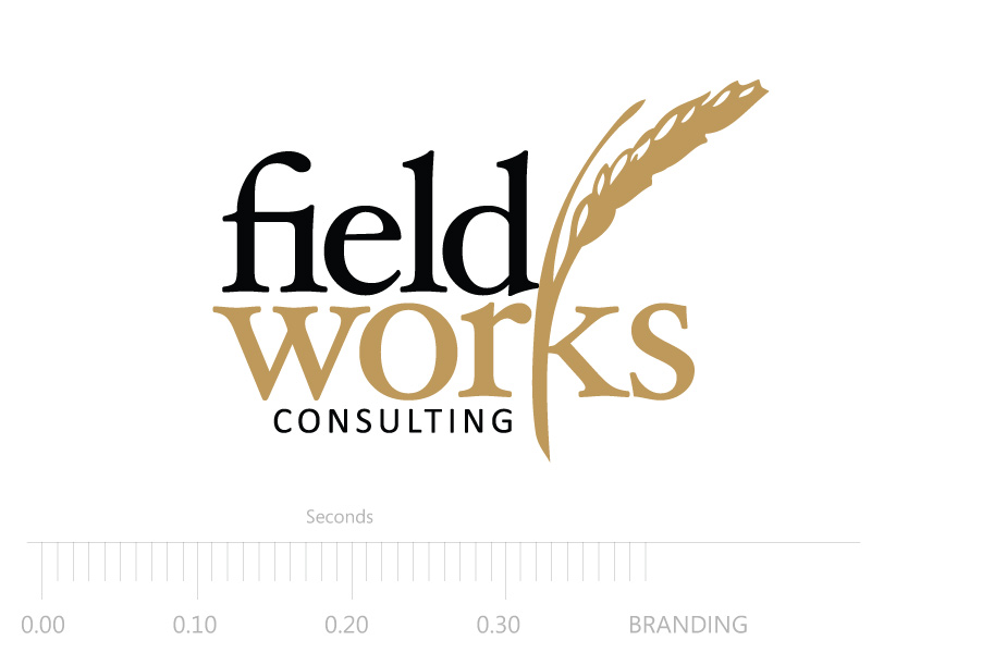 fieldworks-consulting-logo